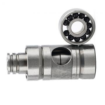 R10 R12 99502h NSK Deep Groove Ball Motor Bearing
